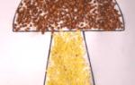 Аппликации из крупы и семян с помощбю окрашивания и пошагового мастер-класса