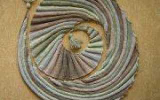 Бактус волнорез спицами с описанием процесса вязания (видео)