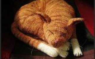 Пушкинский день России: вяжем кота спицами