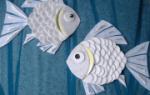 Аппликация рыбки в аквариуме для старшей группы в фото и видео