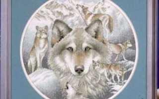 Волки вышивка крестом грациозных хищников (схемы)