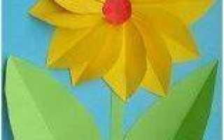 Аппликация цветы в пошаговых фото и видео мастер-классах